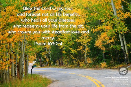 aspen-road-bless-the-lord